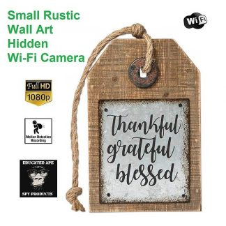 Small Rustic Wall Art Wi-Fi Hidden Camera