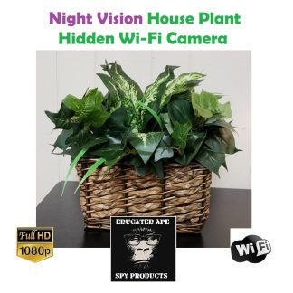 Night Vision House Plant Hidden Wi-Fi Camera